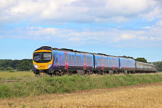 BR class 185 no 185 134 TransPennine Express at Willerby Carr crossing