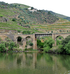 Douro Valley Viaduct