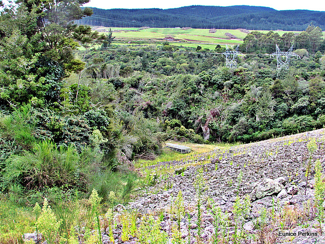 Below Whakamaru Dam.
