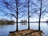 Drei Bäume ein See ein Schloss