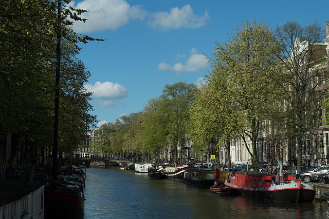Niederlande - Amsterdam DSC09589