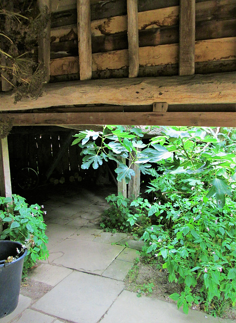 Great Barn, Great Dixter.