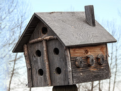 Birdhouse with a difference