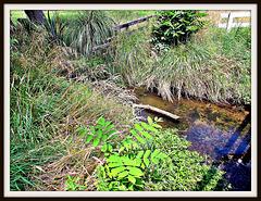 Matarawa Stream.