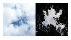 cloud diptych  -  SSC