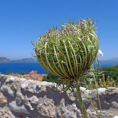 Greece - Pylos, Neokastro