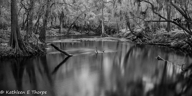 Alderman's Ford - Black Satin Water