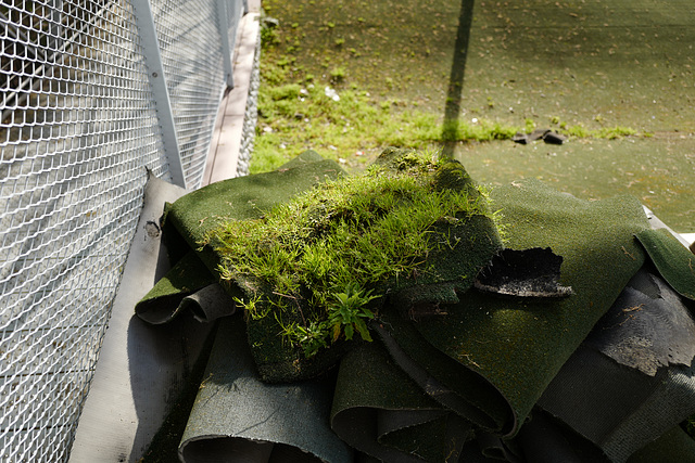vraie et fausse herbe, La Villette