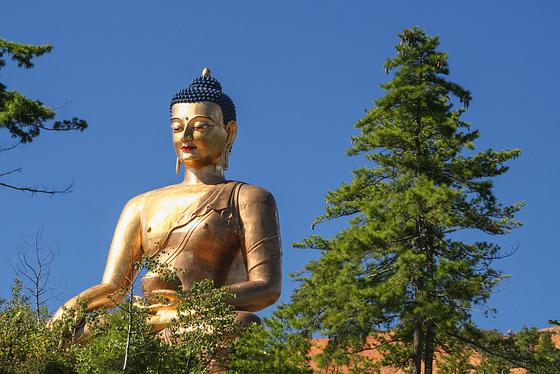 Buddha Dordenma (PiP)