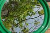 Ingénieuse invention pour voir les feuilles à l'envers