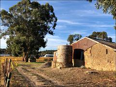 HFF from Summertown, Australia