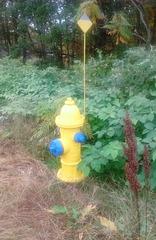 Losange nature à hydrater