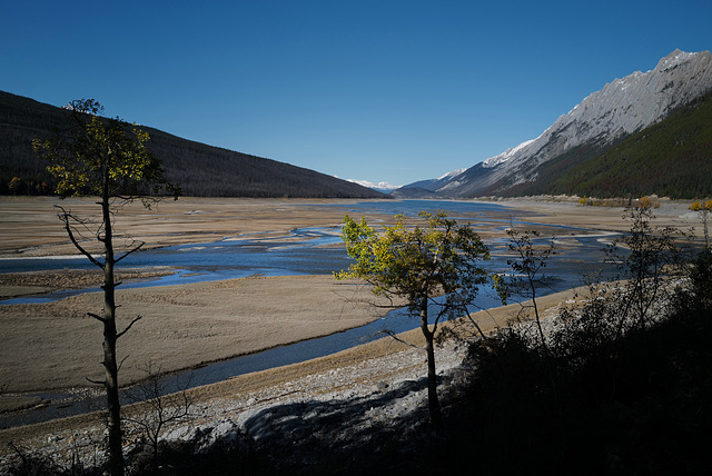 Maligne River Delta L1010814