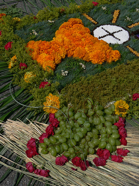 Blütenteppich (2)