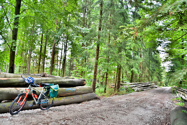 Cycling through the woods and mountains.