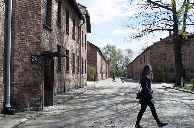 Poland Auschwitz (#2323)