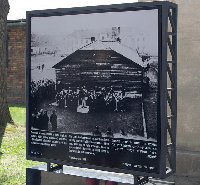Poland Auschwitz (#2324)