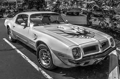 1974 SD 455 Trans AM