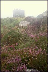 Foggy day on Carn Brae