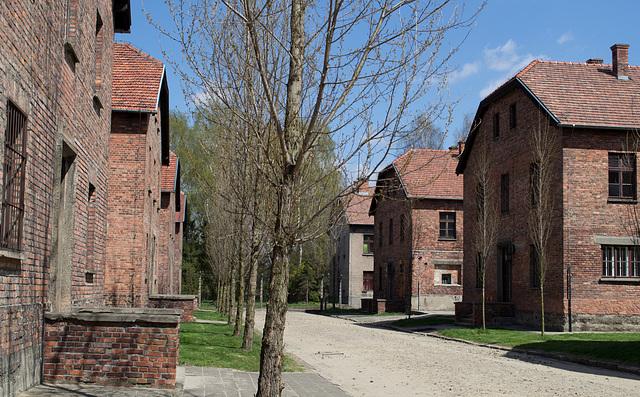 Poland Auschwitz (#2329)