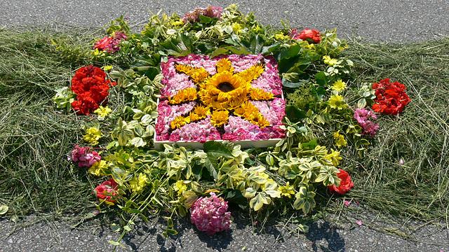 Blütenteppich (3)
