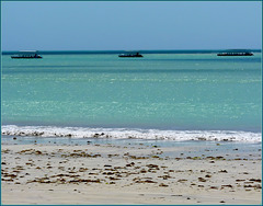 Maceio : Barriera corallina nell'oceano Atlantico