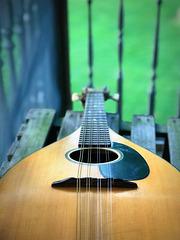 A Mandolin Dream