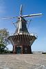 Niederlande - Keukenhof DSC01727