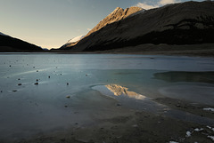 Sunwapta Lake L1010871