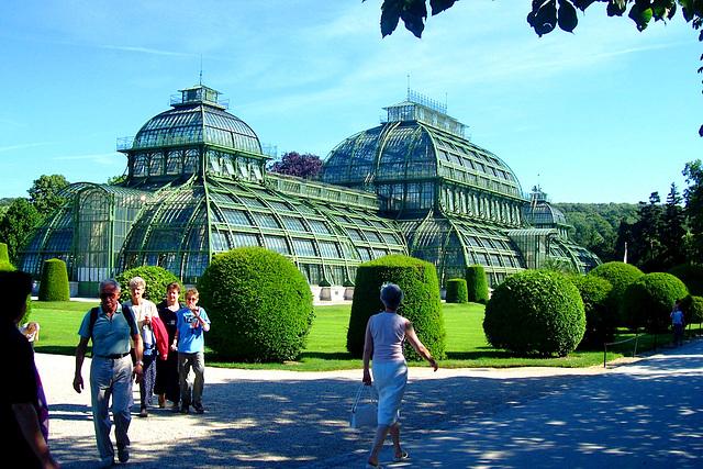 AT - Wien - Palmenhaus am Schloss Schönbrunn
