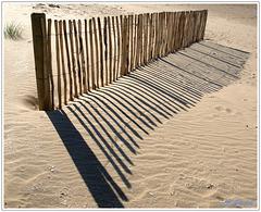 HFF - Dune Fence