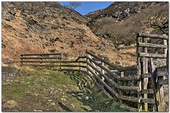 HFF- A Chew fence