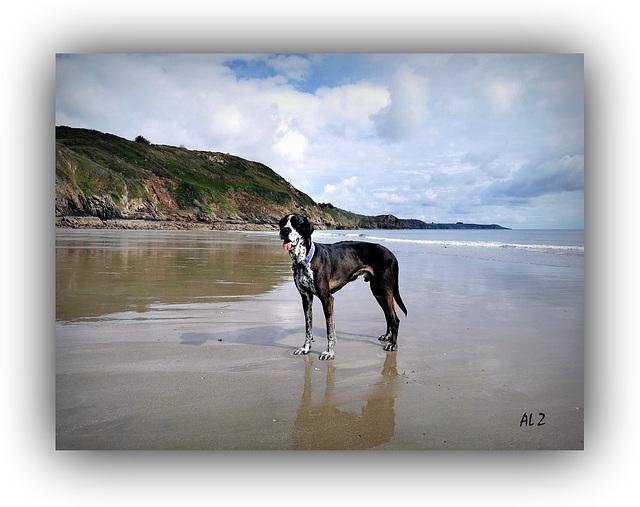 Iron à la plage ***  Iron on the beach
