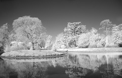 IR National Trust Garden