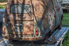Katzen-Siesta bei Fiat-Rostlaube