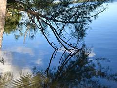 IMG 0729  La prochaine fois, je descends dans cette lagune