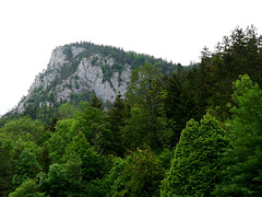 Der Falkenstein / The Hawk's Rock