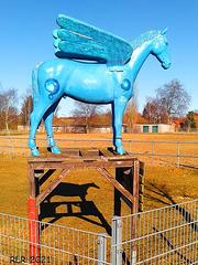 Pegasus-HFF