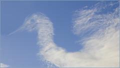 Quand les nuages font cygne.... ;-)