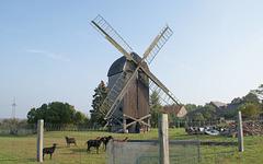 Bockwindmühle Etingen