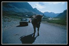 Albula pass  (Dia-Scan  1988)