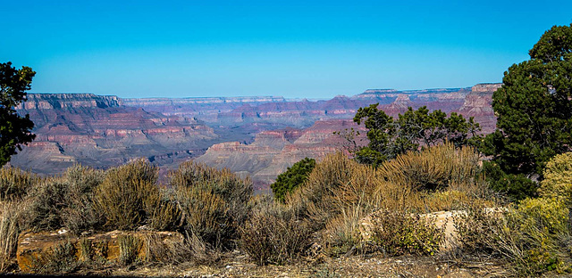 Grand Canyon set 219