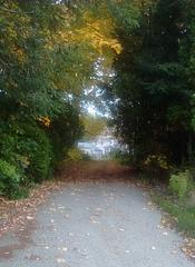 Sentier automnal / Sentiero autunnale