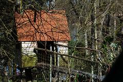 Une cabane dans les arbres , un rêve d'enfant