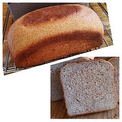 whole wheat pullman bread