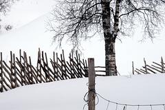 Lapland, HFF
