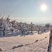 Ein Wintertag wie aus dem Bilderbuch