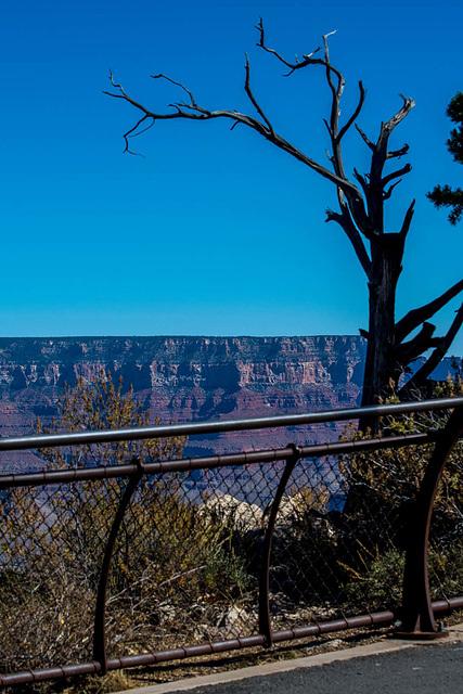 Grand Canyon set 31