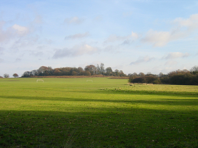 Sports field alongside Hay Head Wood.