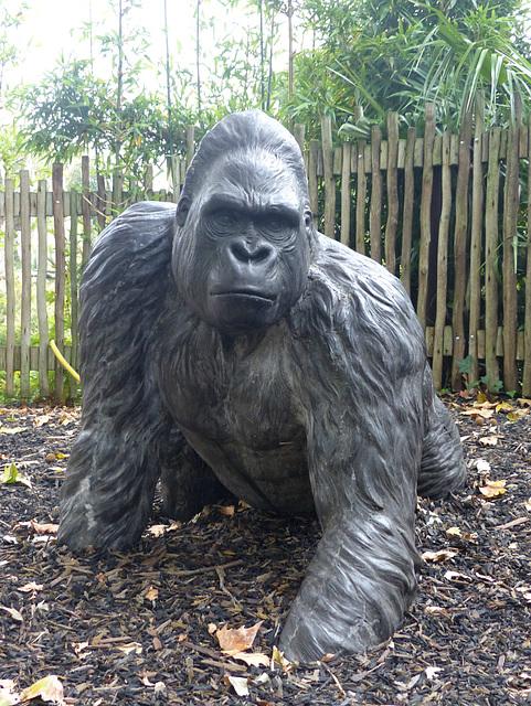 Gorilla Sculpture (1) - 16 October 2015